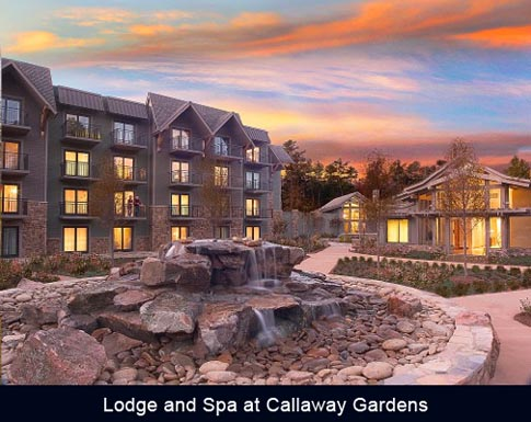 Black Meetings Tourism The Lodge And Spa At Callaway Gardens Appoints Henry Hamor As